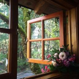 Nước đến chân mới nhảy - Thói trì hoãn - Phan Nguyễn Khánh Đan