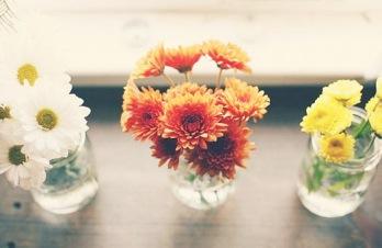 Hoa và Sức Khỏe Con Người - Phan Nguyễn Khánh Đan