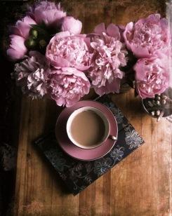 7 MÙI HƯƠNG GIÚP CHÚNG TA THƯ GIÃN TINH THẦN VÀ HỒI PHỤC SỨC KHỎE - Phan Nguyễn Khánh Đan