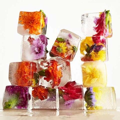 Các món ăn được chế biến từ hoa thật (02)
